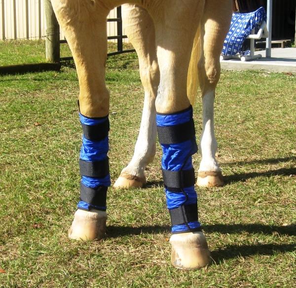Chladící bandáže pro koně HyperKewl Horse Wraps modré sada 2ks