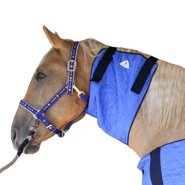 Chladící nákrčník pro koně HyperKewl Horse Neck modrý / M