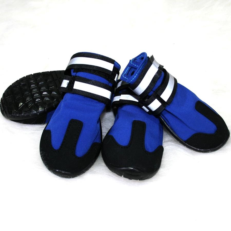 boty pro psy Mr.Shoes TREK Blue4. 1 28adbfd8d8
